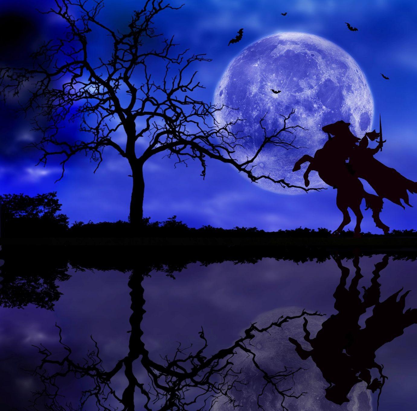 noche dalid
